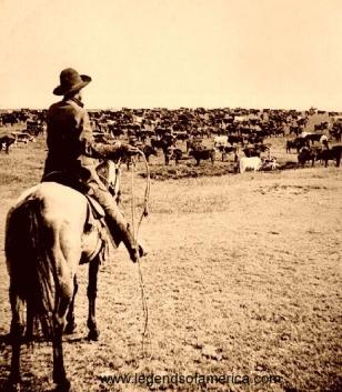 cattleroundup-500.jpg